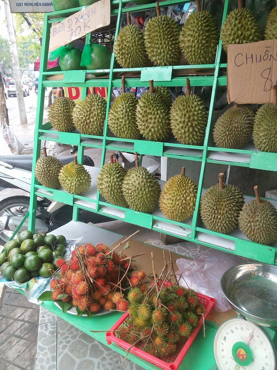 Shop Trái Cây Sạch Bến Tre - Sầu Riêng Thái.